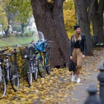 Culottes and autumn colors